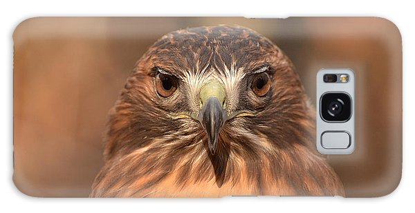 Red-tailed Hawk Stare Galaxy Case