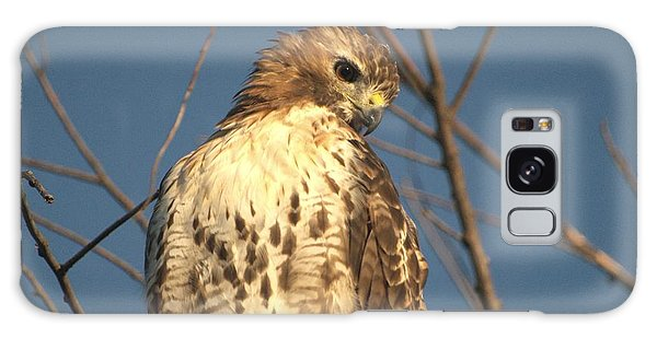 Red Tailed Hawk  Galaxy Case