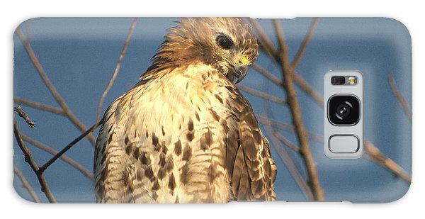 Red Tailed Hawk  Galaxy Case by Susan  Dimitrakopoulos