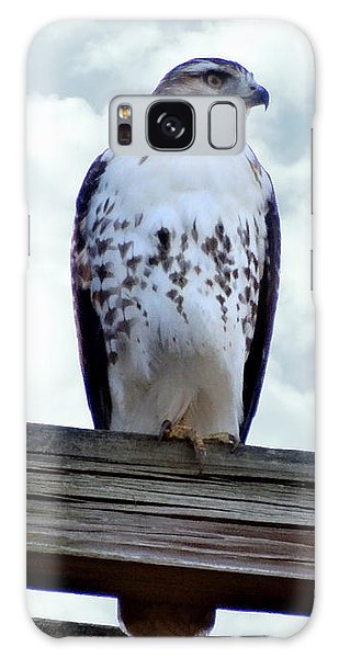 Red Tailed Hawk Waiting Galaxy Case
