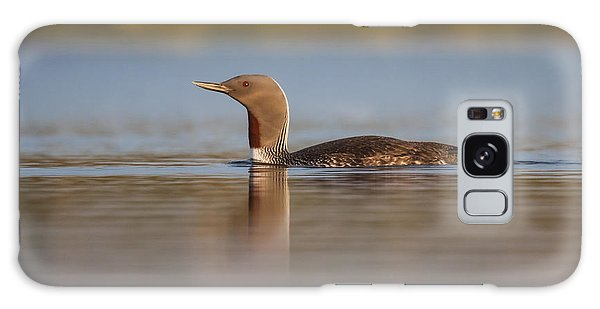 Red-throated Diver Gavia Stellata Galaxy Case