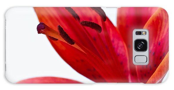Red Tiger Lily Galaxy Case