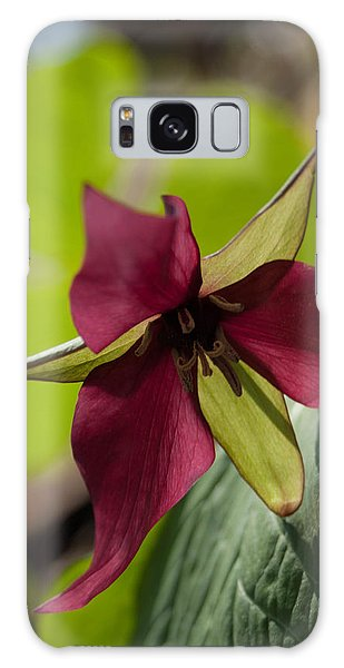 Red Trillium - Glspla659 Galaxy Case