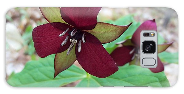 Red Trilliums Galaxy Case