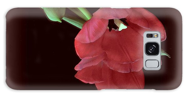 Red Tulip On Burgundy Galaxy Case
