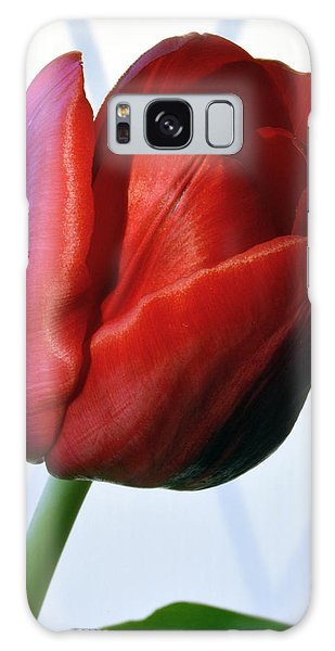 Red Tulip Portrait Galaxy Case