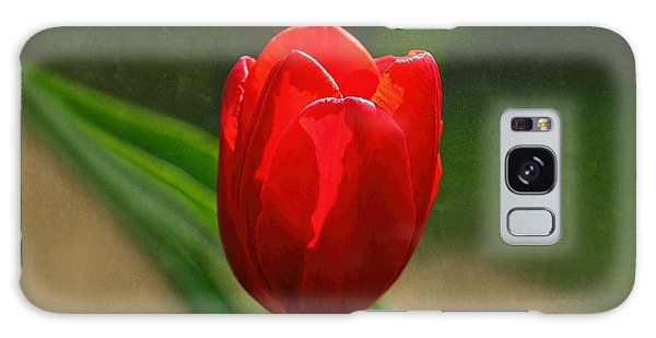 Red Tulip Spring Flower Galaxy Case by Tracie Kaska