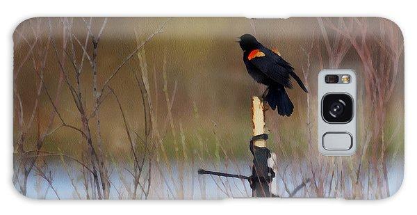 Red Winged Blackbird 2 Galaxy Case by Ernie Echols