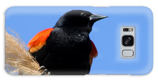Red-winged Blackbird Galaxy Case by Bob and Jan Shriner