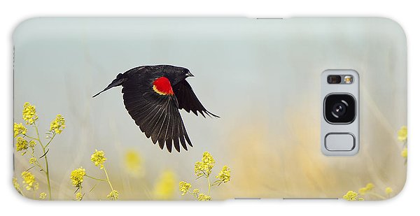 Red Winged Blackbird In Flight Galaxy Case