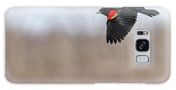 Red-winged Blackbird In Flight Galaxy Case