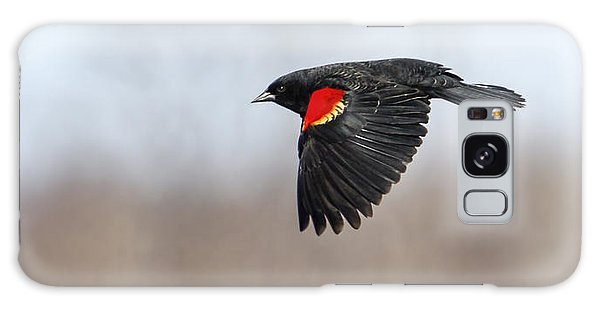 Red-winged Blackbird In Flight Galaxy Case