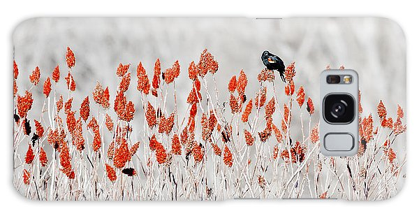 Red-winged Blackbird Galaxy Case