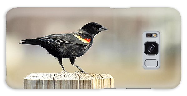 Red Winged Blackbird Galaxy Case
