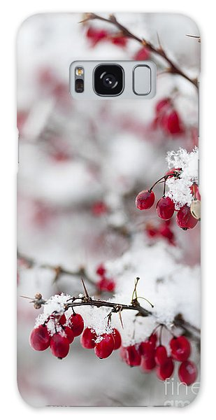 Red Winter Berries Under Snow Galaxy Case