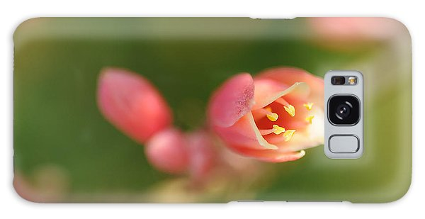 Red Yucca Flower Galaxy Case