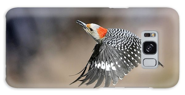 Redbelly Woodpecker Flight Galaxy Case