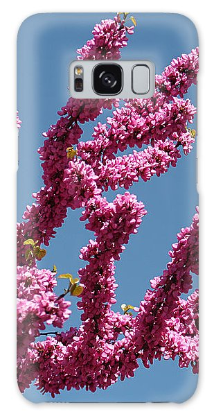Redbud Against Blue Sky Galaxy Case