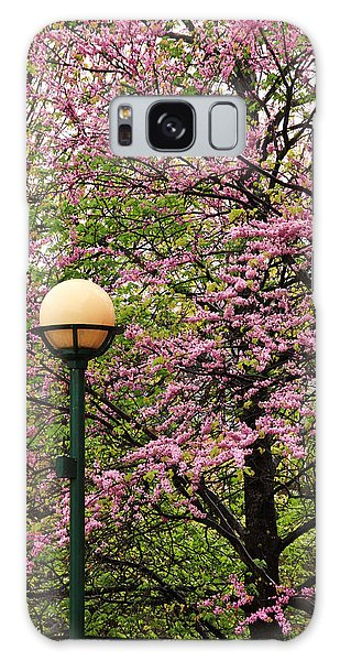 Redbud And Lamp Galaxy Case