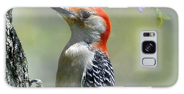 Redbud With Woodpecker Galaxy Case