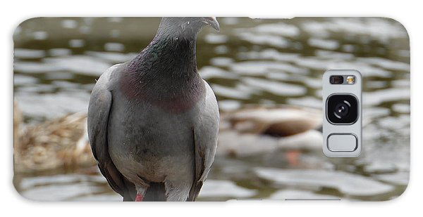 Redclaws The Pigeon Posing Galaxy Case