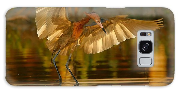 Reddish Egret In Golden Sunlight Galaxy Case