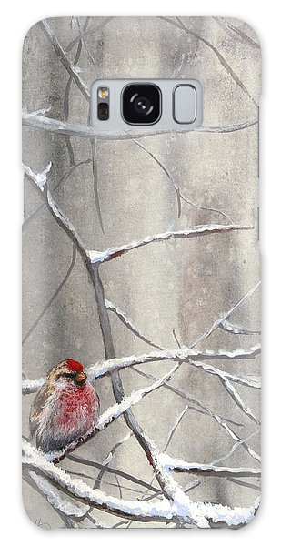 Redpoll Eyeing The Feeder - 1 Galaxy Case by Karen Whitworth