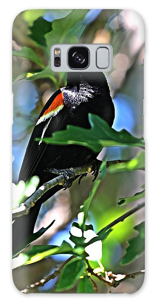 Redwing Blackbird On Alert Galaxy Case