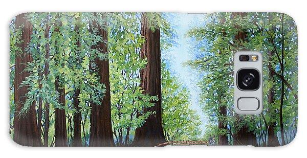 Redwood Forest Path Galaxy Case