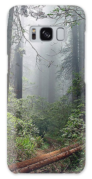 Redwood Mist Galaxy Case by John Bushnell
