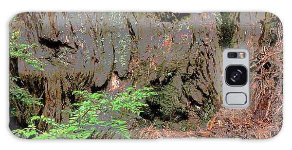 Coast Redwood Galaxy Case