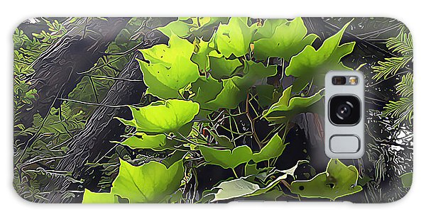 Redwood Trees And Ivy  Leaves Galaxy Case by Wernher Krutein