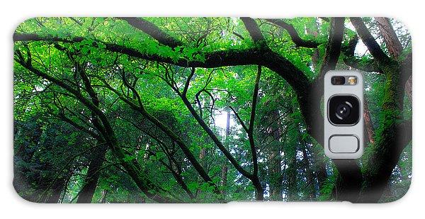 Redwoods Galaxy Case
