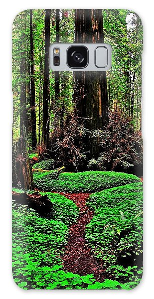 Redwoods Wonderland Galaxy Case