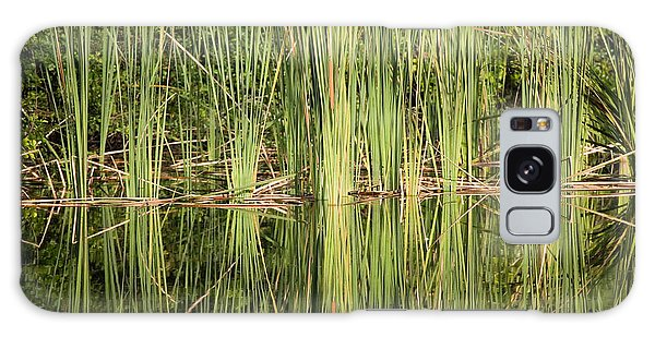 Reeds Of Reflection Galaxy Case