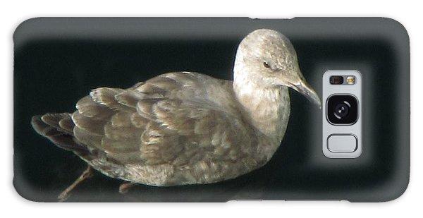 Refections Of A Gull Galaxy Case by Jennifer Wheatley Wolf