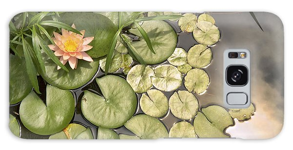 Reflected Light Upon Flowering Water Lilies Galaxy Case