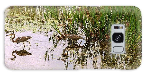 Boynton Galaxy S8 Case - Reflection Of Cranes On Water, Boynton by Panoramic Images