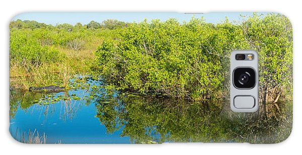 Anhinga Galaxy S8 Case - Reflection Of Trees In A Lake, Anhinga by Panoramic Images