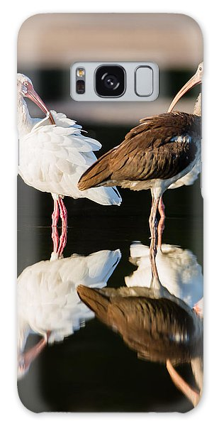 Reflection Of Two Young Ibis Galaxy Case