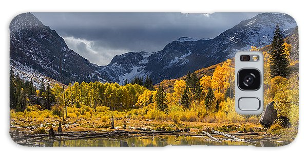 Reflections Of Autumn Galaxy Case