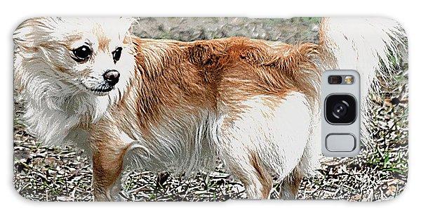 Regal Pose Chihuahua Galaxy Case