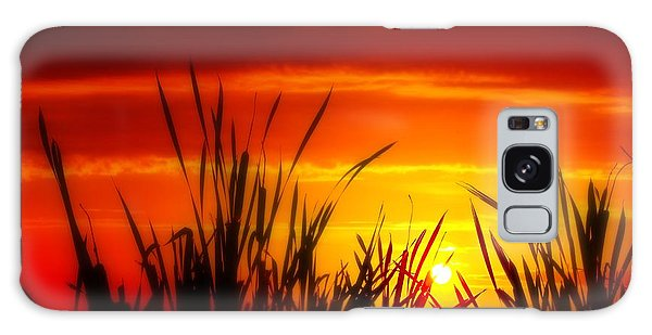 Reservoir Sunset Tall Grass Galaxy Case