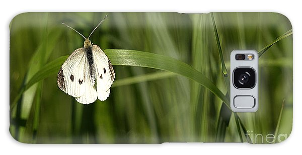 Resting Butterfly Galaxy Case