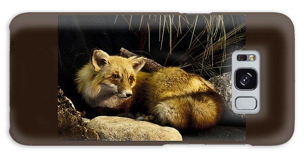 Resting Fox Galaxy Case