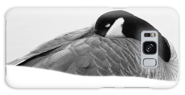 Resting Goose In Bw Galaxy Case