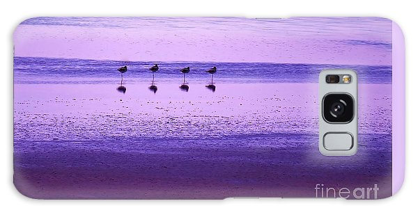 Avocets Resting In The Sunset Galaxy Case by Michele Penner