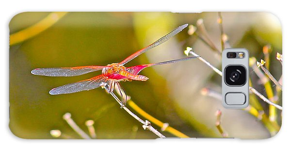 Resting Red Dragonfly Galaxy Case