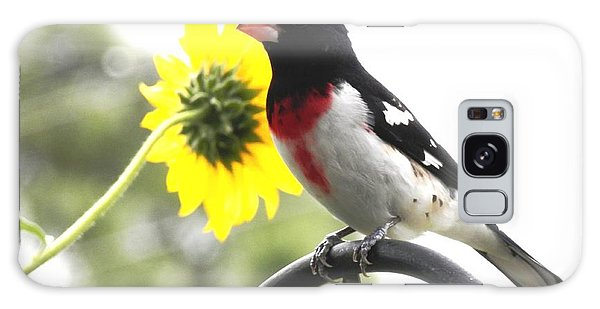 Resting Rose Breasted Grosbeak Galaxy Case by Belinda Lee