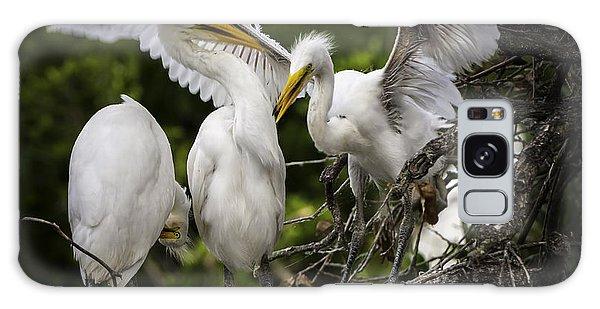 Restless Teenage Egrets Galaxy Case